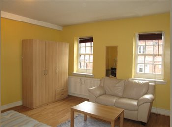 A very spacious double bedroom, Oxford Circus