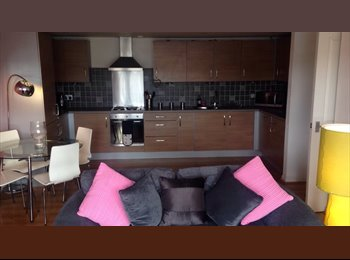 EasyRoommate UK - Double Room at City Quay - Dundee, Dundee - £450 pcm