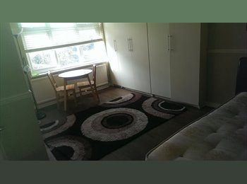 EasyRoommate UK - large double with ensuite - Anerly, London - £650 pcm