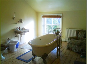 EasyRoommate UK - Rooms available in chilled out houseshare - Sefton Park, Liverpool - £285 pcm