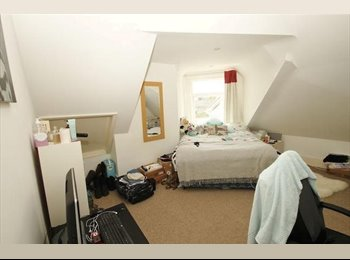 EasyRoommate UK - Cosy Double Room in big student house - Springbourne, Bournemouth - £325 pcm