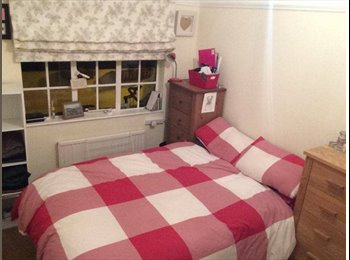 EasyRoommate UK - Summer 3 mt lease fon beautiful, quiet double room - Twickenham, London - £700 pcm