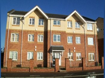 EasyRoommate UK - Modern 3 bedroom flat suitable for 2 sharing - Manor, Sheffield - £263 pcm