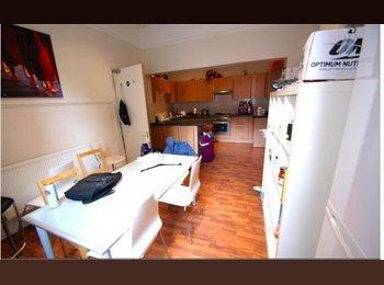 HYDE PARK LEEDS MIXED HOUSE SHARE