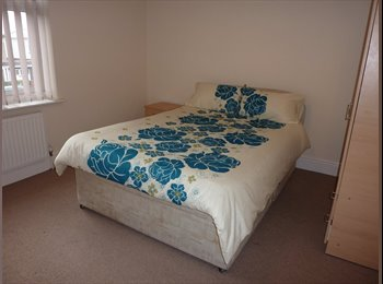 Attention Professional: Gorgeous Room Available