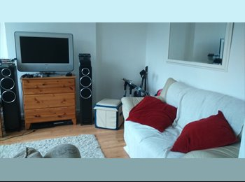 EasyRoommate UK - Double room in a bright and spacious house! - Hatfield, Hatfield - £450 pcm