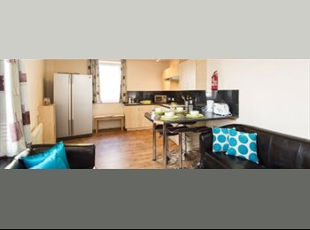 EasyRoommate UK - Amazing room  - Wolverhampton, Wolverhampton - £462 pcm