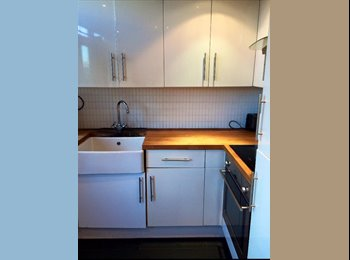 URGENT Flatmate wanted for flat in Liverpool St