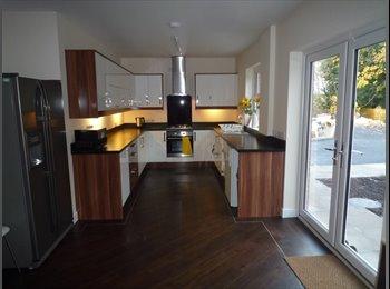 EasyRoommate UK - Brand new house - Chester, Chester - £475 pcm