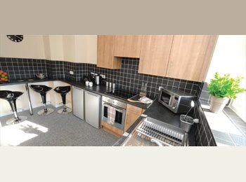 EasyRoommate UK - Double Room shared bathroom  central Liverpool - Vauxhall, Liverpool - £424 pcm