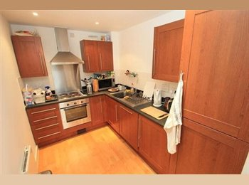 EasyRoommate UK - Beautiful located double ensuite bedroom - Leicester Centre, Leicester - £400 pcm