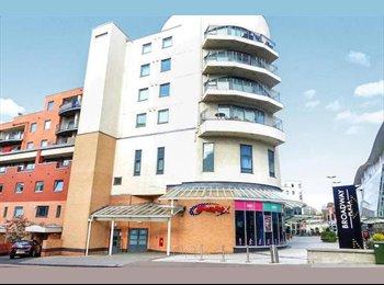 EasyRoommate UK - Vibrant Single Room in Broadway Plaza (Five Ways) - Ladywood, Birmingham - £370 pcm
