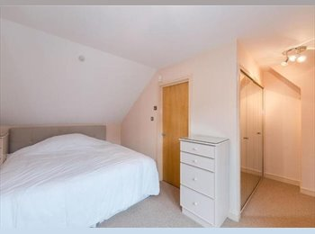 EasyRoommate UK - Marylebone: a new modern flat is now available! - Westminster, London - £1,000 pcm