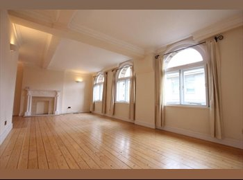 EasyRoommate UK - LUXURY FLAT NEXT TO TRAFALGAR SQUARE - Covent Garden and The Strand, London - £1,500 pcm