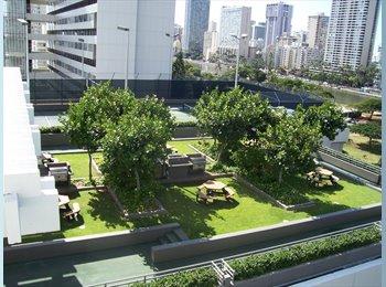 EasyRoommate US - GREAT MarcoPoloOcean Waikiki VuPoolReckSecureBus - Oahu, Oahu - $1,000 pcm