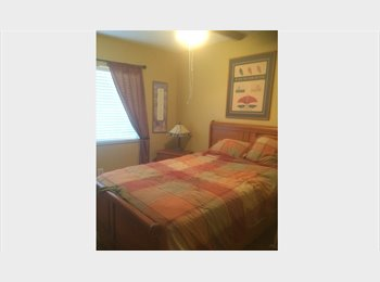 EasyRoommate US - ROOM FOR NON SMOKING DOG LOVER  550.00 PLUS CABLE - Seminole County, Orlando Area - $600 pcm