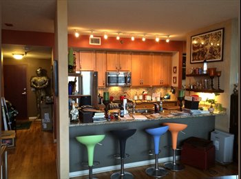 Share a great condo in Wrigleyville/Boystown!