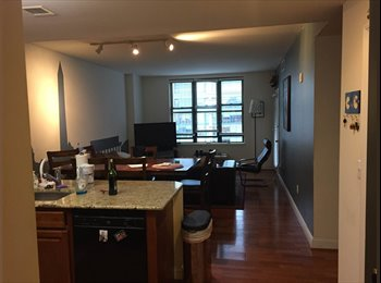 Amazing penthouse apt. in Chinatown.