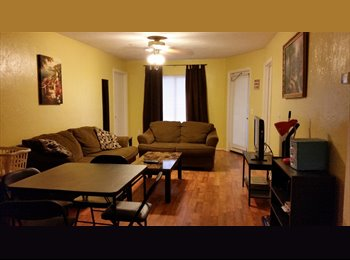 EasyRoommate US - UF Student wanted - Gainesville, Gainesville - $400 pcm
