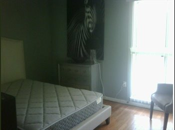 Contemporary Room Available