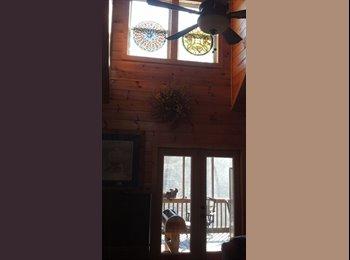BIG Cabin Needs Partner