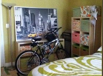 Studio Apartment across fr Beach near N. Miami Bch