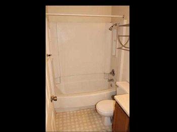 EasyRoommate US - 2bdr 1 bath manhattan Kansas  - Manhattan, Other-Kansas - $340 pcm