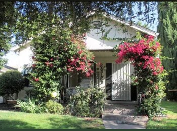EasyRoommate US - Room for Rent: July-Dec - Santa Clara, San Jose Area - $893 pcm