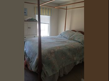 EasyRoommate US - airy, clean, furnished 3 bedroom townhouse - Worcester, Worcester - $775 pcm