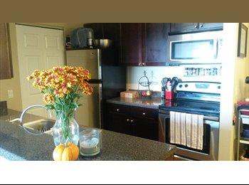 EasyRoommate US - Seeking Female Roommate, Bloomingdale IL - Naperville, Naperville - $795 pcm