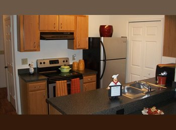 EasyRoommate US - 1/1 in a 3/3 upgraded at the Pavillion on 62nd - Gainesville, Gainesville - $404 pcm