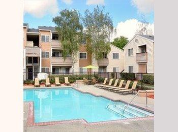EasyRoommate US - IT Consultant - Walnut Creek, Oakland Area - $950 pcm