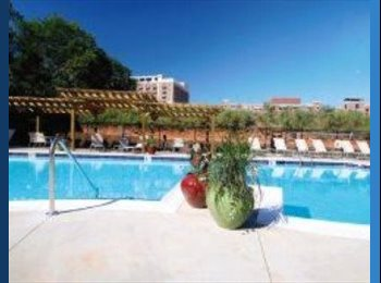EasyRoommate US - 909 Broad Summer Lease! - Athens, Athens - $540 pcm