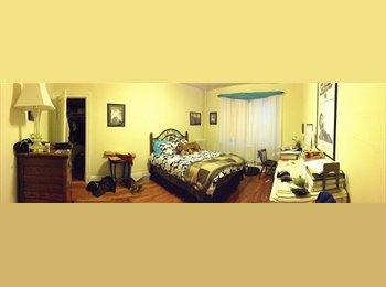 Graduate Student Seeking Roommate