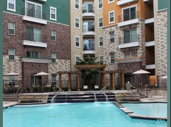 Apartment near UT campus for rent for summer months