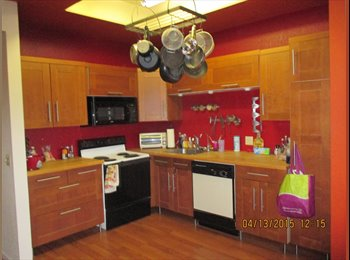 Downtown Gilbert Room for Rent