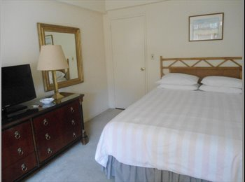 Large, Sunny Room with Private Bathroom
