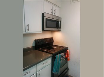 1 bedroom single/shared available to rent from May