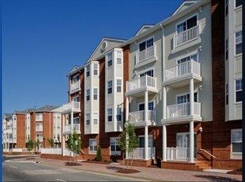 EasyRoommate US - Female Roommate Wanted in Hampton, VA! - Hampton, Hampton Area - $650 pcm