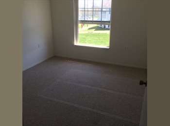 EasyRoommate US - Room for rent 1br 1bath - Ann Arbor, Ann Arbor - $465 pcm