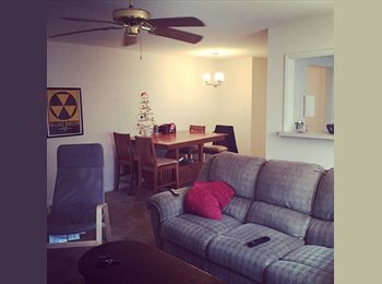 Single 26 year old proffessional seeks roommate