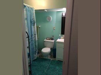EasyRoommate US - $950 Beautiful Basement for rent utilities include - Alexandria, Alexandria - $950 pcm