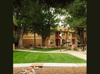 EasyRoommate US - Room avaiable now - Flagstaff, Other-Arizona - $517 pcm