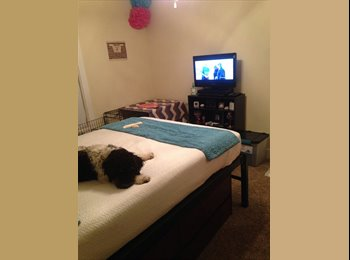EasyRoommate US - Room for lease at The Republic - Lubbock, Lubbock - $545 pcm