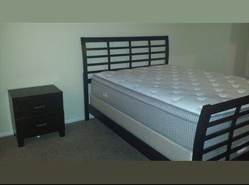EasyRoommate US - Bed/Full Bath/Queen Furnish/ $800 Utilities Incl - Norfolk, Norfolk - $750 pcm