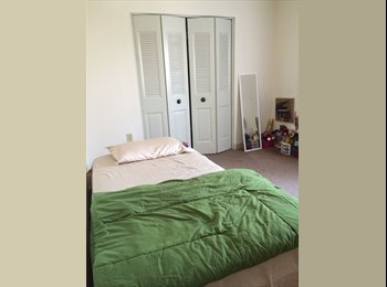 EasyRoommate US - Shared bedroom for rent! - Dorchester, Boston - $625 pcm