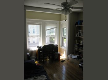 Room for Rent in Brighton