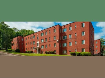 EasyRoommate US - Spacious one bedroom available for rent in a 1 BHK - Pittsburgh Eastside, Pittsburgh - $510 pcm