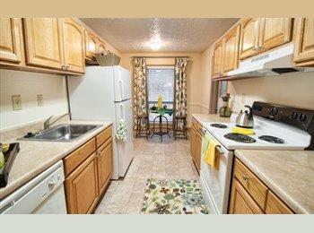 EasyRoommate US - Seeking New Roommate - Sandy Springs / Dunwoody, Atlanta - $1,000 pcm