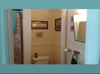 EasyRoommate US - Room for rent - St Paul Downtown, Minneapolis / St Paul - $325 pcm